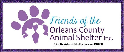 Friends of the Orleans County Animal Shelter NYS Registered Rescue/Shelter RR058